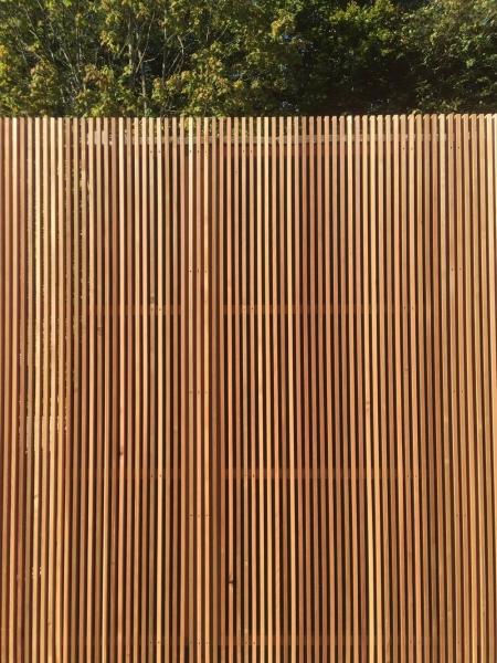 18 x 38mm P.A.R. Western Red Cedar